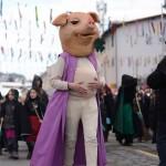 pustni karneval 21 150x150 - 40 ZACOPRANIH